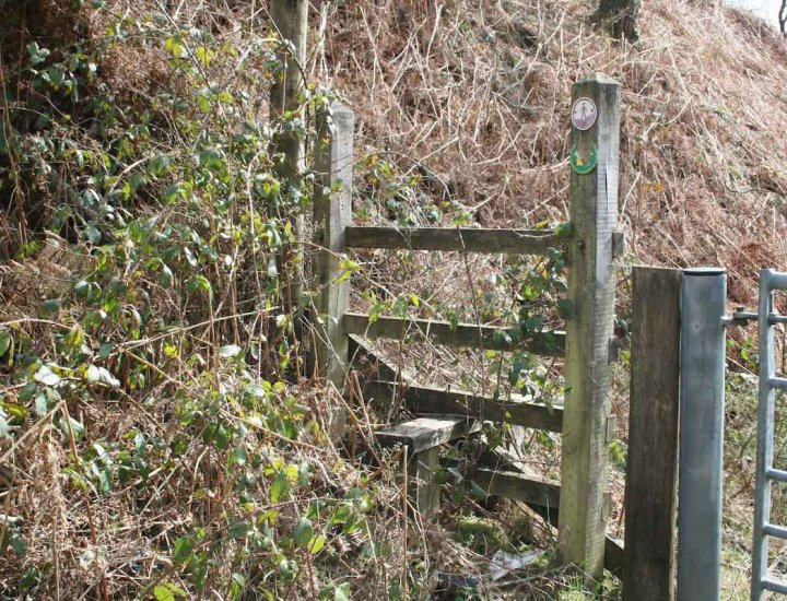 Over grown wooden stile on PROW above Abernant