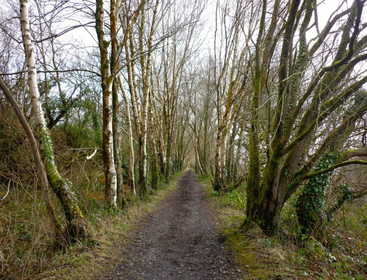 An old Branch line from the Vale of Neath Railway above Llwydcoed